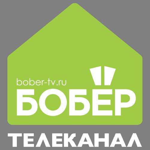 Логотип Бобер
