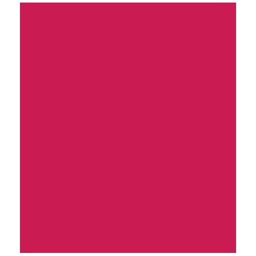 Логотип Домашний (+4)